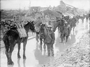 Horses in WWI